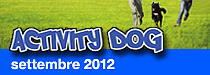 Bauhaus Albergo pensione per animali Activity Dog 2012